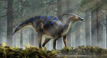 dinosaur-slide