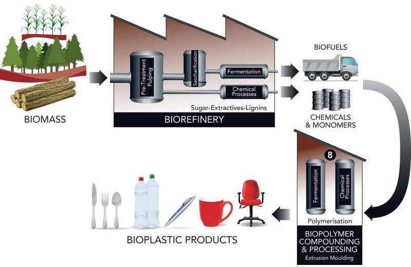 Biorefinery diagram